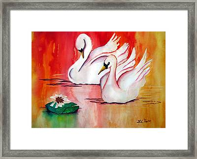 Swans In Love Framed Print by Lil Taylor