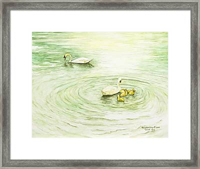 Swans In St. Pierre Framed Print