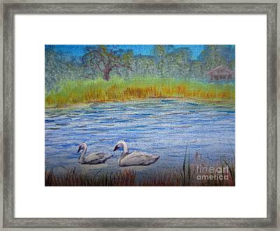 Swans Framed Print by Laurianna Taylor