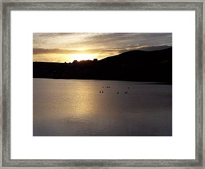 Swans On Loch Framed Print by George Leask