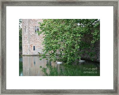 Framed Print featuring the photograph Swans Under The Palace Walls by Linda Prewer
