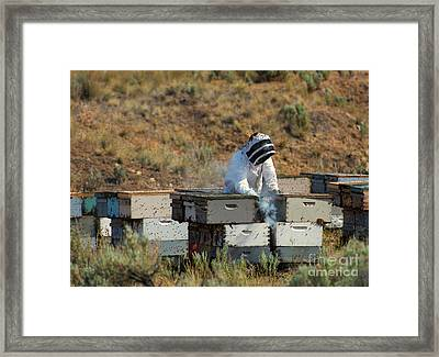 Swarmed Framed Print