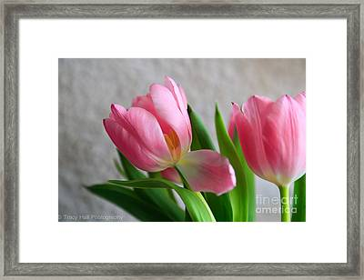 Sway With Me  Framed Print by Tracy  Hall