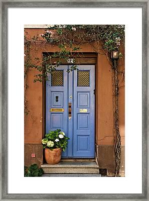 Swedish Door Framed Print