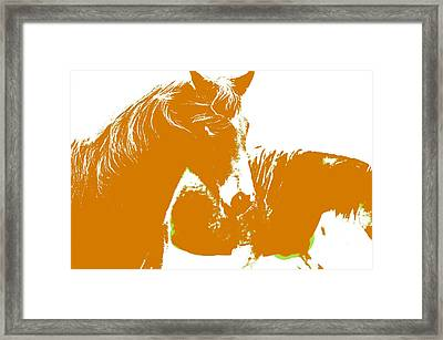 Swedish Half Breed Horse In Orange Framed Print by Tommytechno Sweden