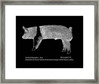 Framed Print featuring the drawing Swedish Hampshire by Larry Campbell