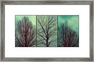 Sweep The Sky Framed Print