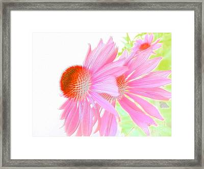 Sweet And Gentle Framed Print by Angelia Hodges Clay
