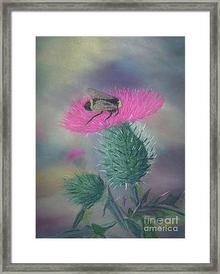 Sweet And Prickly Framed Print