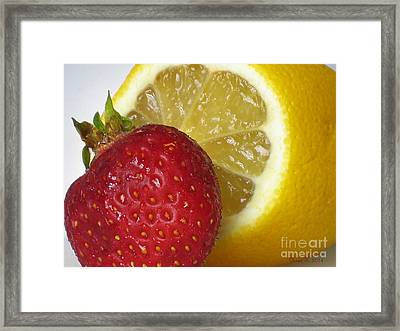 Framed Print featuring the photograph Sweet And Sour by Nina Silver