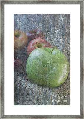 Sweet Apples Framed Print by Arlene Carmel