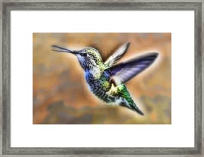 Sweet Beaks Framed Print