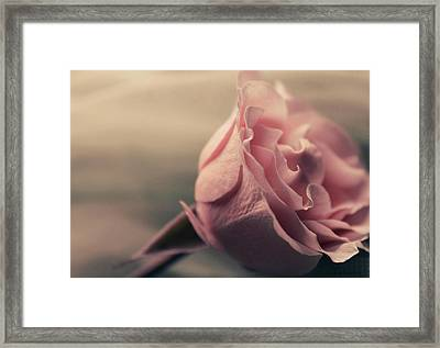 Sweet Blushing Love Framed Print