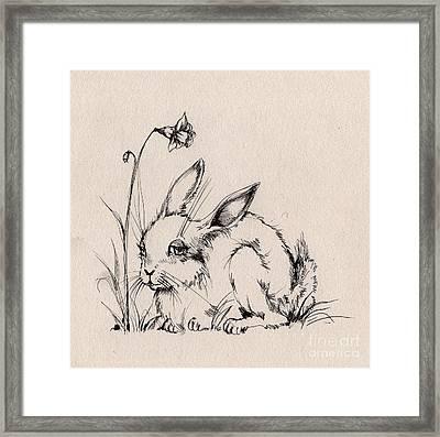 Sweet Bunny Framed Print by Angel  Tarantella