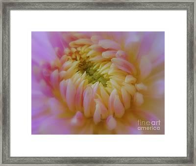 Sweet Caroline Framed Print by Lingfai Leung