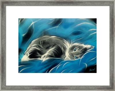 Sweet Cat Framed Print by Ismael Paint