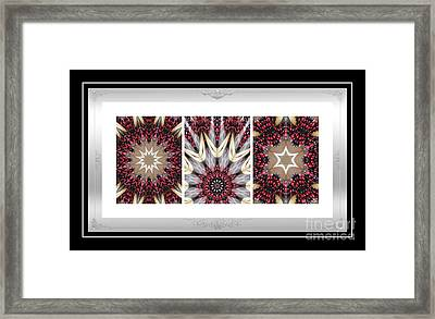 Sweet Cherry Supreme - Triptych - Dining Art 2 Framed Print by Barbara Griffin