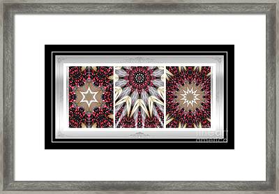 Sweet Cherry Supreme - Triptych - Dining Art Framed Print by Barbara Griffin