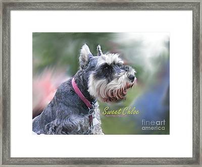 Sweet Chloe Framed Print by Angelia Hodges Clay