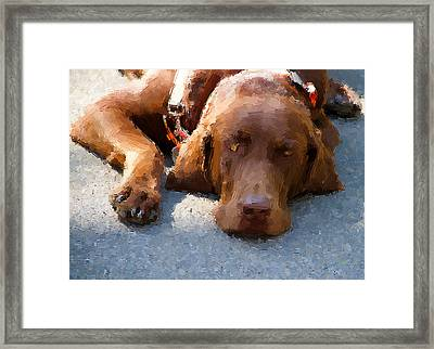 Sweet Chocolate Framed Print by Alice Gipson