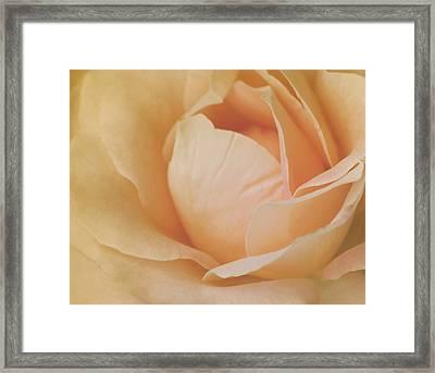 Sweet Divine Mercy Framed Print by The Art Of Marilyn Ridoutt-Greene