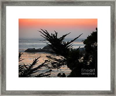 Sweet Dreams Framed Print by Ellen Cotton