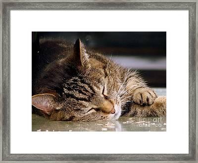 Sweet Dreams Framed Print by Eunice Miller