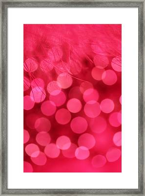 Framed Print featuring the photograph Sweet Emotion by Dazzle Zazz