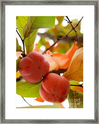 Framed Print featuring the photograph Sweet Fruit by Erika Weber