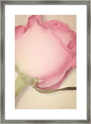 Sweet Gentleness Framed Print