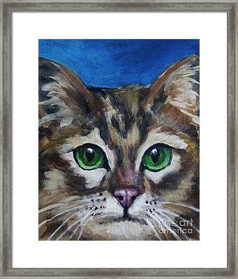 Sweet Green Eyes  Framed Print