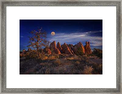 Framed Print featuring the photograph Sweet Light by Wendell Thompson