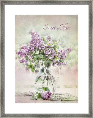 Sweet Lilacs Framed Print by Lori Deiter