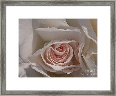 Framed Print featuring the photograph Sweet Opening by Agnieszka Ledwon