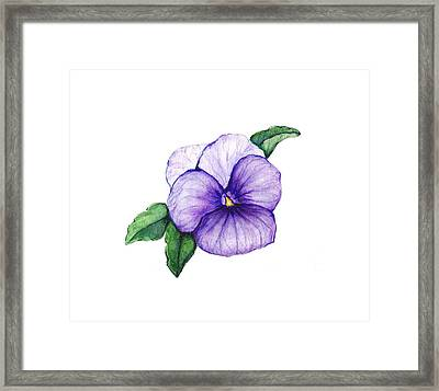 Framed Print featuring the painting Sweet Pansy by Heidi Kriel