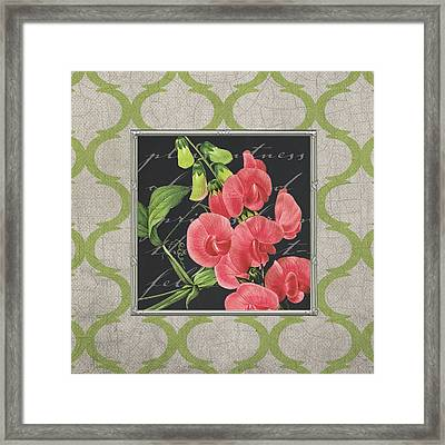 Sweet Pea Framed Print by Tammy Apple