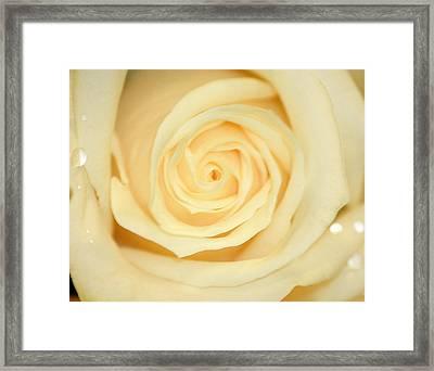 Sweet Pearl Framed Print