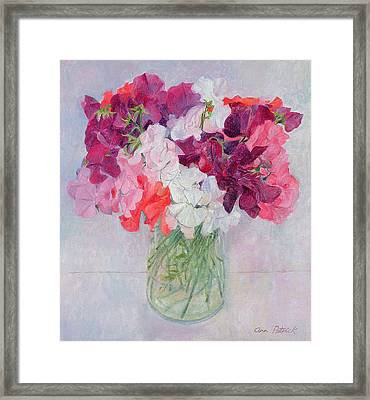 Sweet Peas Framed Print by Ann Patrick