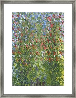 Sweet Peas Framed Print by Leigh Glover