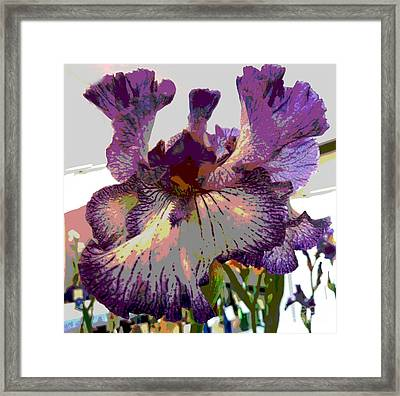 Framed Print featuring the photograph Sweet Purple by Sally Simon