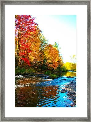 Sweet Serenity Framed Print