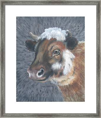 Sweet Shirley The Cow Framed Print by Claude Schneider