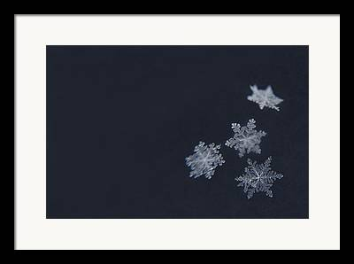 Snowflakes Framed Prints