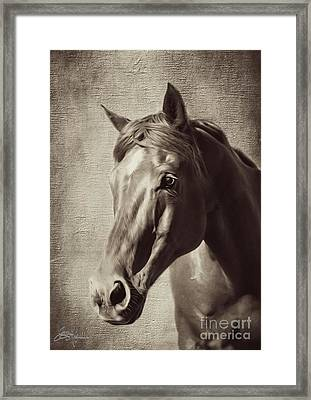 Sweet Soul Framed Print by Jacque The Muse Photography
