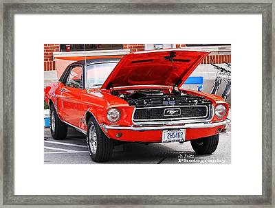 Framed Print featuring the photograph Sweet Stang... by Al Fritz