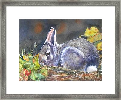 Sweet Temptation Framed Print by Patricia Pushaw