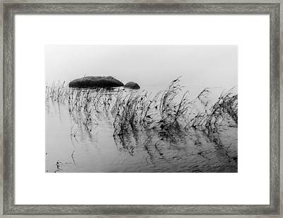 Framed Print featuring the photograph Sweet Water by Edgar Laureano