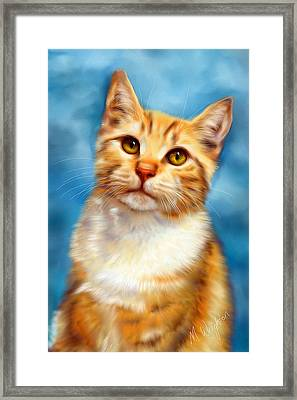 Sweet William Orange Tabby Cat Painting Framed Print