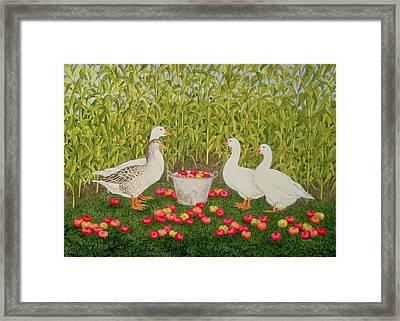 Sweetcorn Geese Framed Print by Ditz