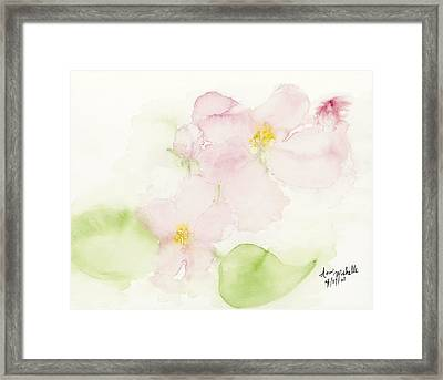 Sweetest Blossoms Of Spring Framed Print